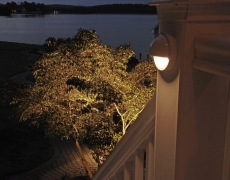 F-Lake-House-Deck-Light-and-Tree
