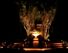 Urn and Crepe Myrtle Tree Lighting